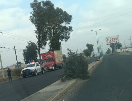 Recuperan camiones robados de La Costeña y Coca Cola en Huejotzingo