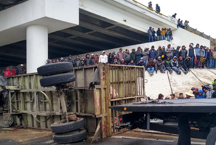 Rapiña tras volcadura de camión con cerdos en la Cuacnopalan-Oaxaca