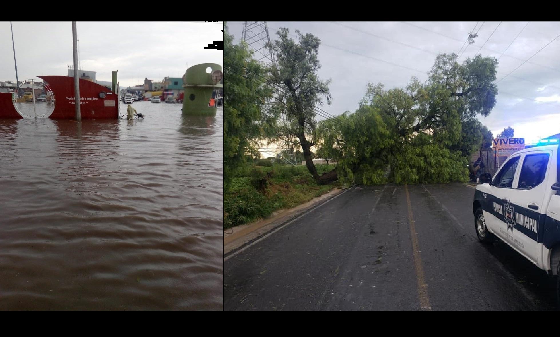 Tromba inunda y derriba árboles en Tepeaca y Cuapiaxtla de Madero