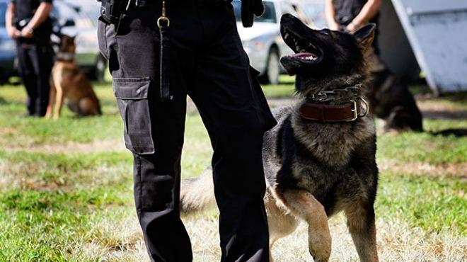 Con perros y policía montada vigilarán vacaciones en Cholula