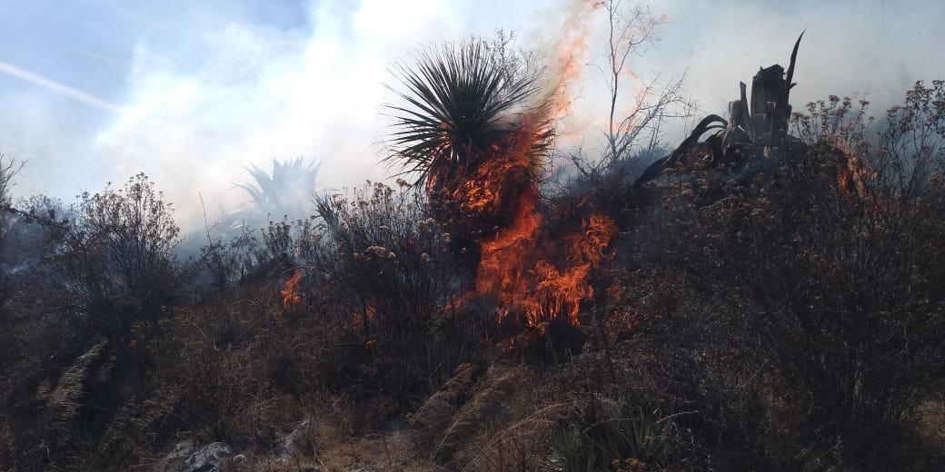 Incendio en cerro de San Lorenzo La Joya en Tepeaca