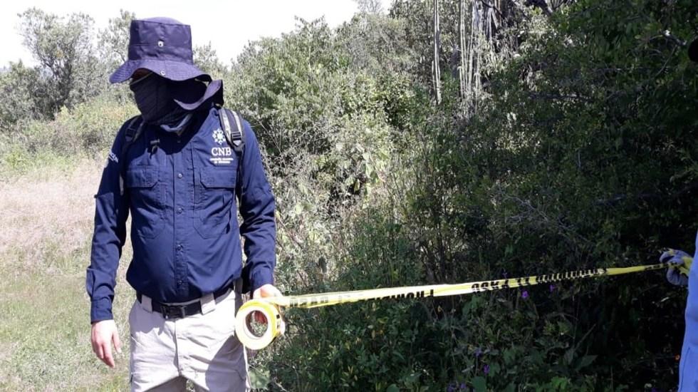 Hallan restos de 59 personas en fosas clandestinas en Guanajuato