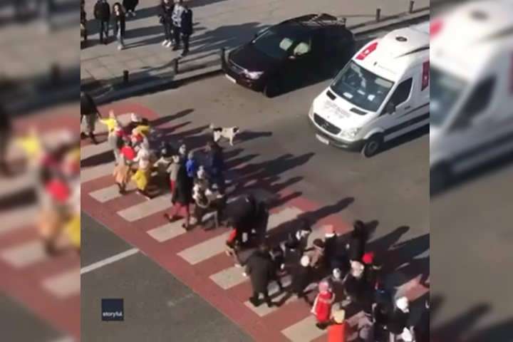 VIDEO Perrito ayuda a niños a cruzar la calle