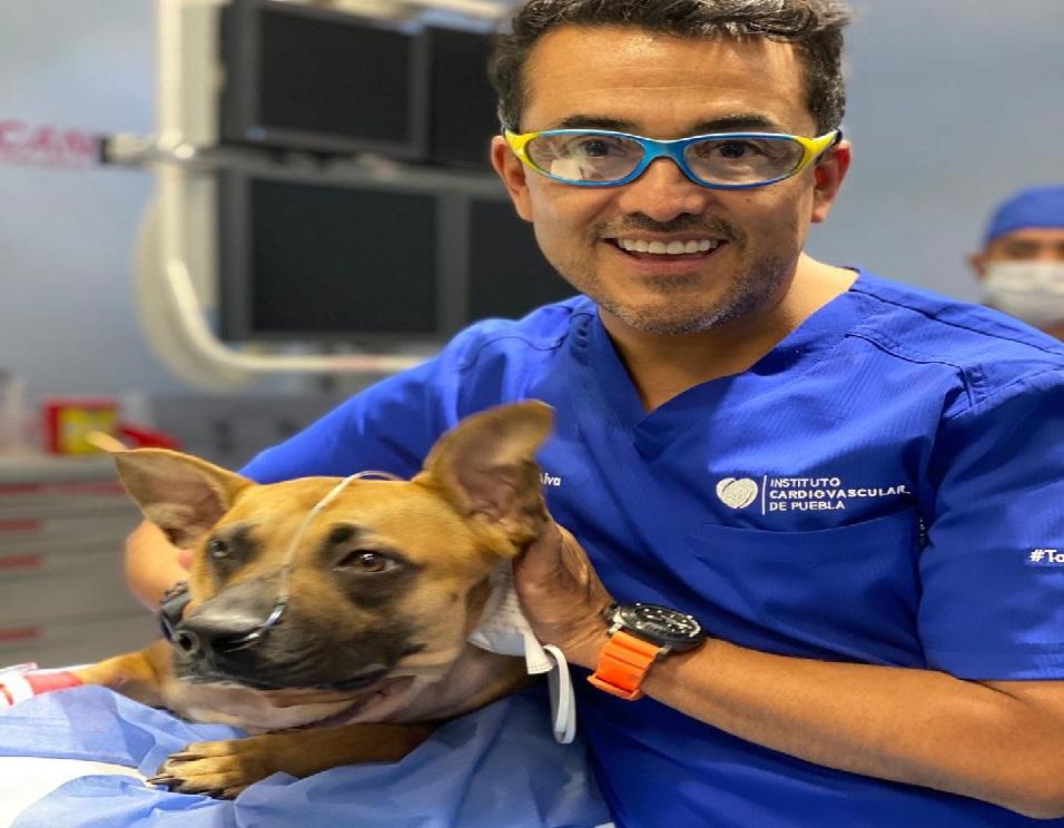 Médico poblano realiza primera valvuloplastia canina en México y AL