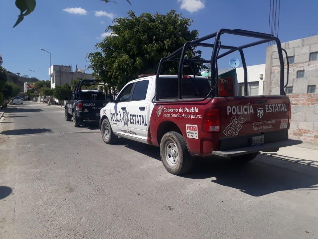 Pastor Alemán ataca a niño de tres años en Tehuacán