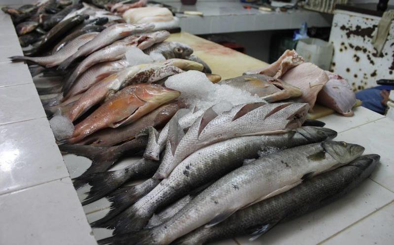 Pandemia afecta venta de mariscos en Izúcar