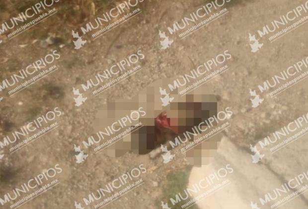 Dejan cuerpo sin vida de un recién nacido en Xonacatepec