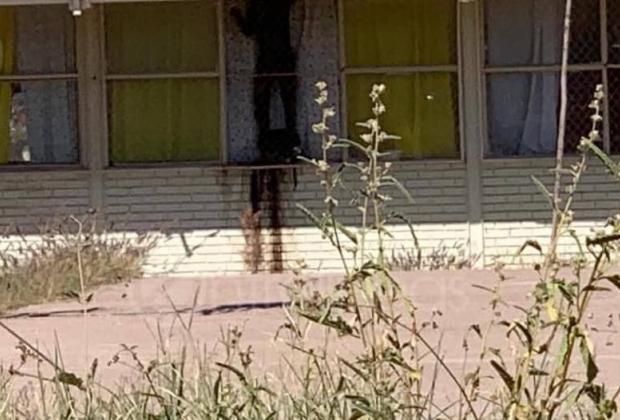 Hallan cuerpo putrefacto en ventana de escuela; era un ladrón y se degolló
