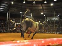 Foto Miguel Ambrosio