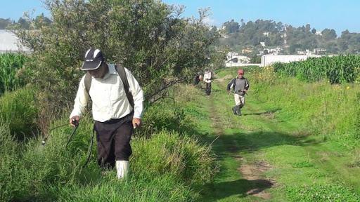 Fumigando sus campos, Francisco halló la muerte en Chiautla