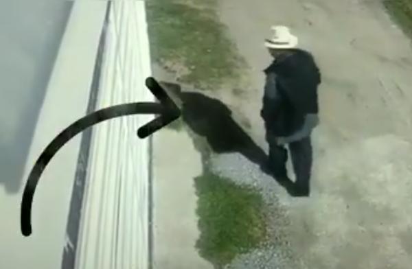 VIDEO Abuelito y su banda roban casas en Texmelucan