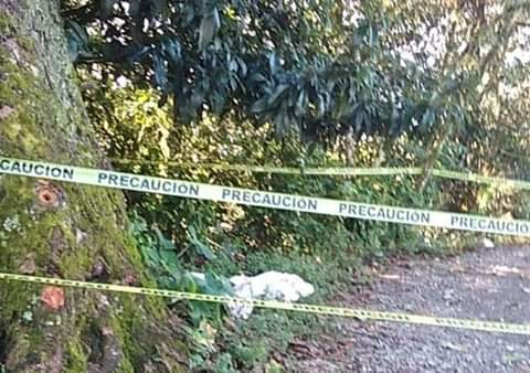Hortensia fue asesinada tras celebrar a la virgen en Zihuateutla