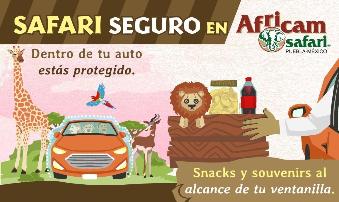 Recorridos en Africam Safari serán en el auto por Covid-19