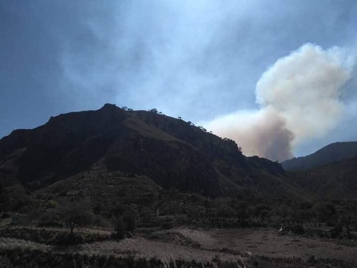 Se registra incendio en cerro del municipio de Zautla