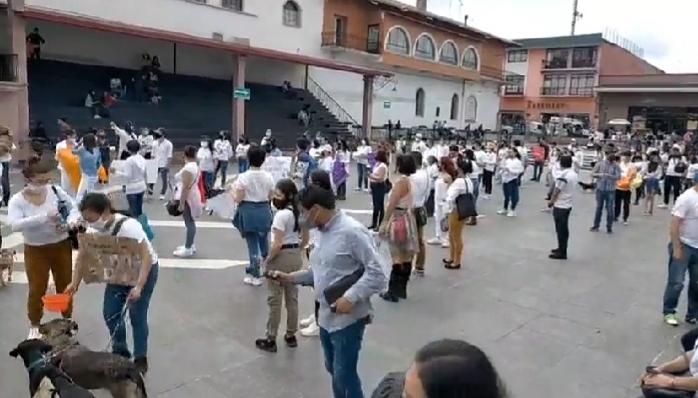 Protestan en Teziutlán por envenenamiento de perros