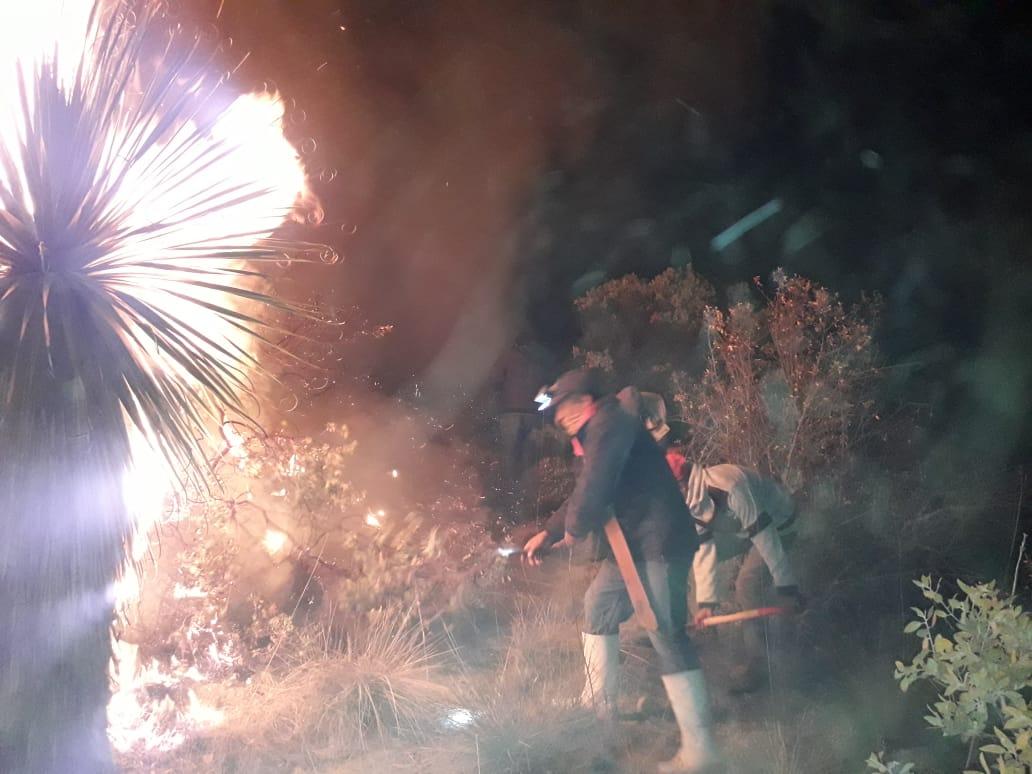 Incendio consumió 500 hectáreas en Tlachichuca
