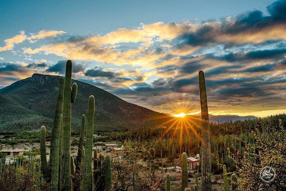 Un recorrido entre la naturaleza, respirando vida en la Biosfera de Tehuacán
