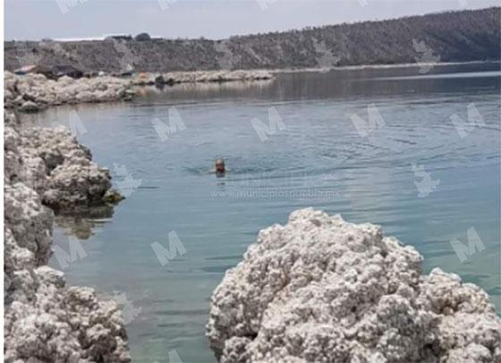 Mueren ahogados padre e hijo en laguna de Alchichica