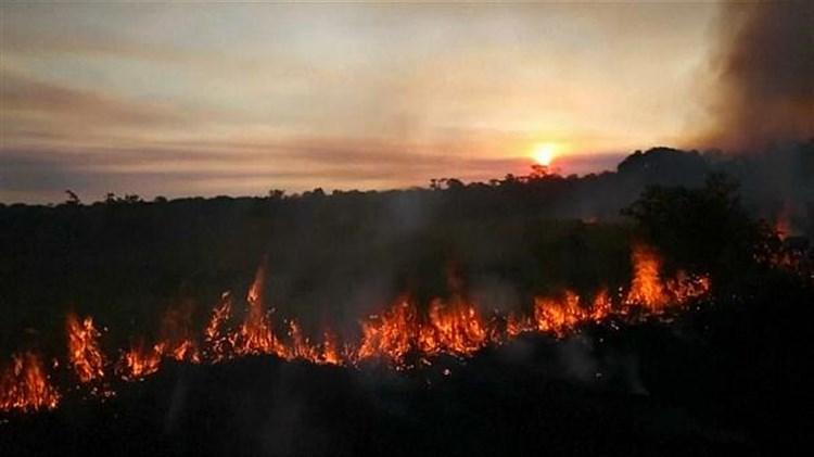 Despliega Brasil aviones contra nuevos incendios en el Amazonas