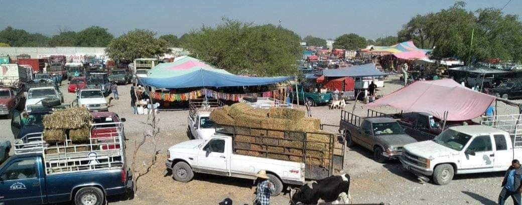 Suspenden la plaza de animales de Zozutla en Yehualtepec