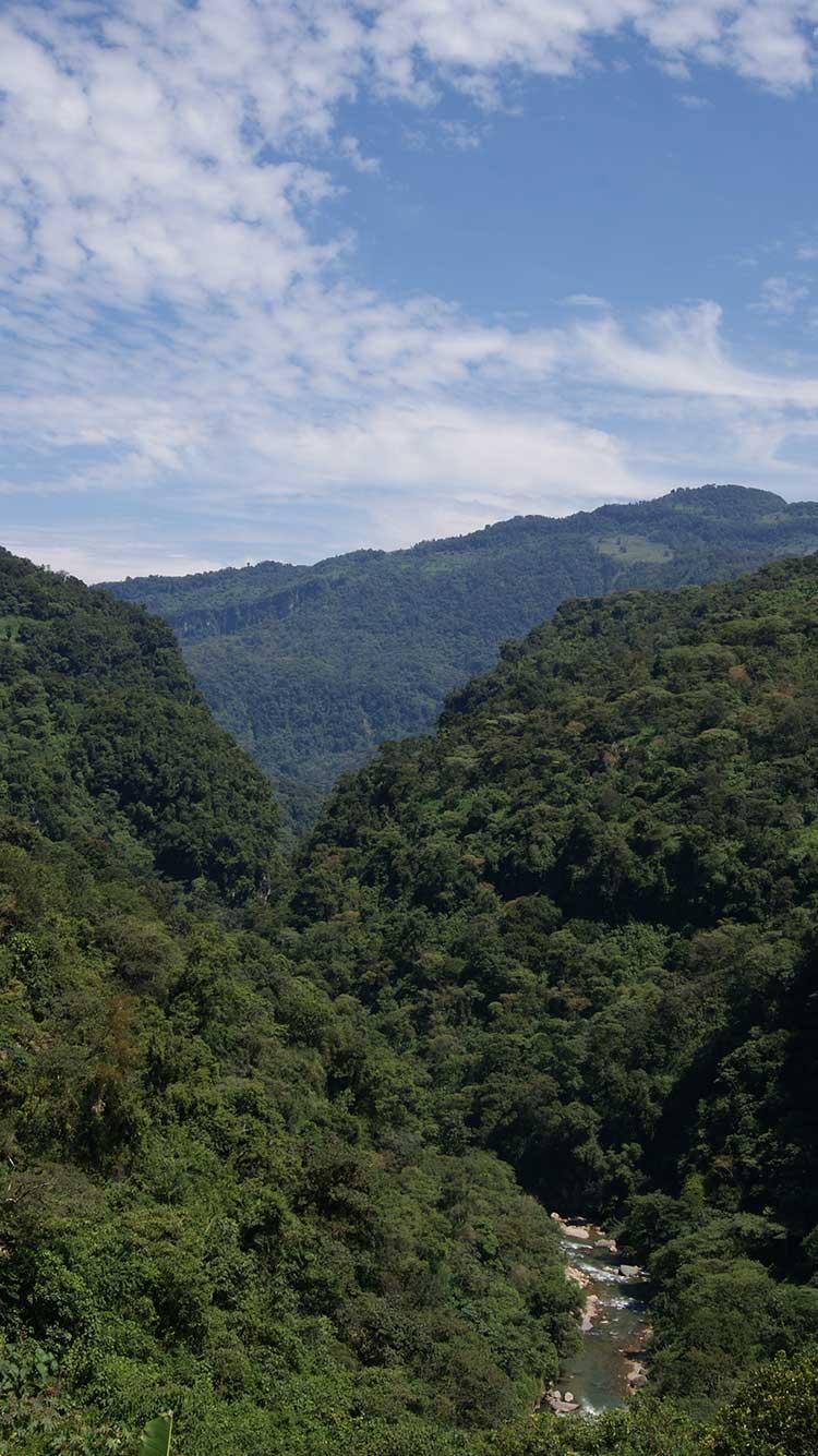 Construirá ICA 3 hidroeléctricas en la Sierra Norte
