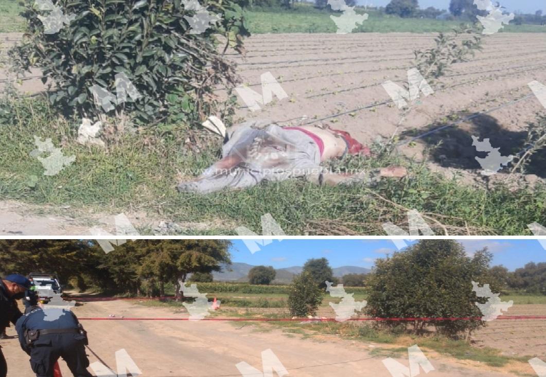 Arrojan a ejecutado cerca de la autopista Puebla-Orizaba