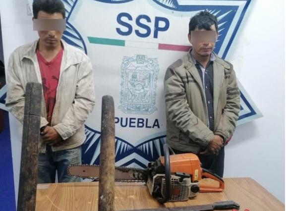 Por tala clandestina y huachicol caen sujetos de la banda de El Cacaloco en Ocotepec