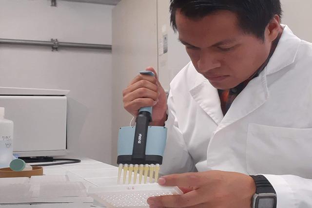 Cadmio, un factor de riesgo en el desarrollo de diabetes