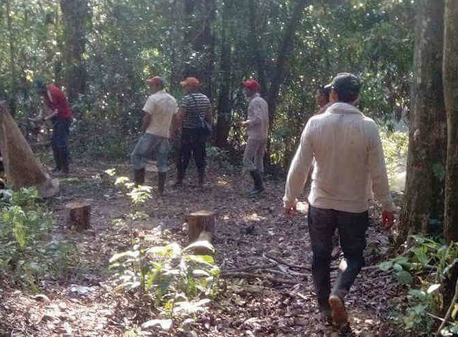 Iban por leña y encuentran restos humanos en Chignautla