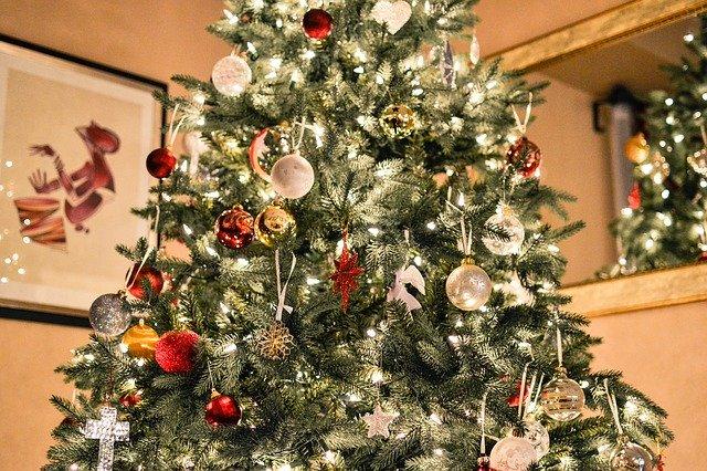 Puebla es el tercer vendedor de árboles de navidad a nivel nacional