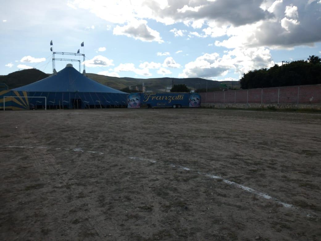 Profepa decomisa animales de circo tras queja presentada por asociación