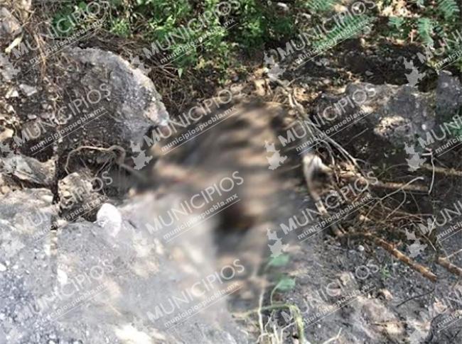Hallan restos humanos semi enterrados en Tlacotepec