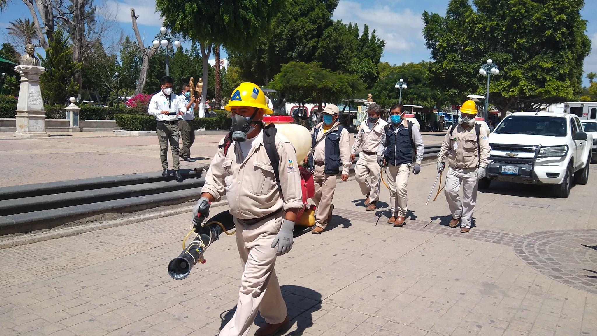 Registran casi 500 casos de dengue en la región de Tehuacán