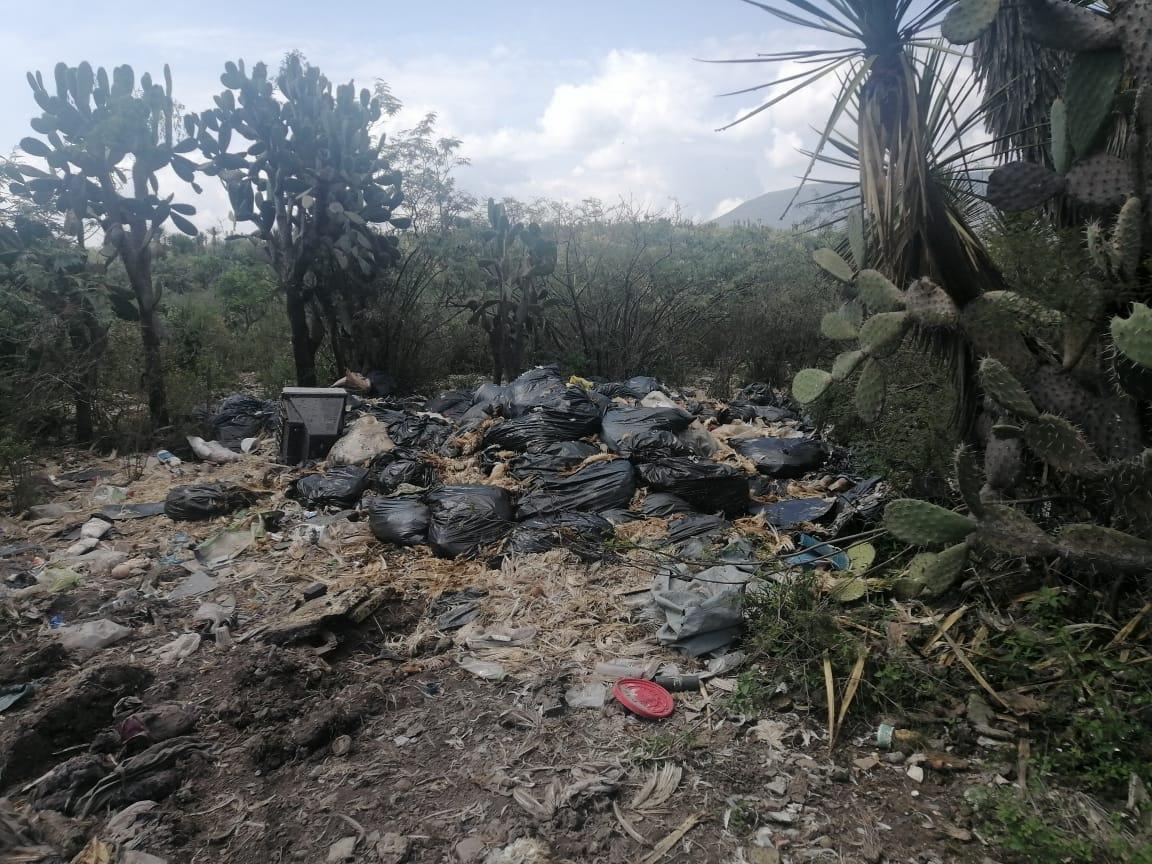 Ooselite detecta 3 tiraderos clandestinos de residuos de aves en Tehuacán