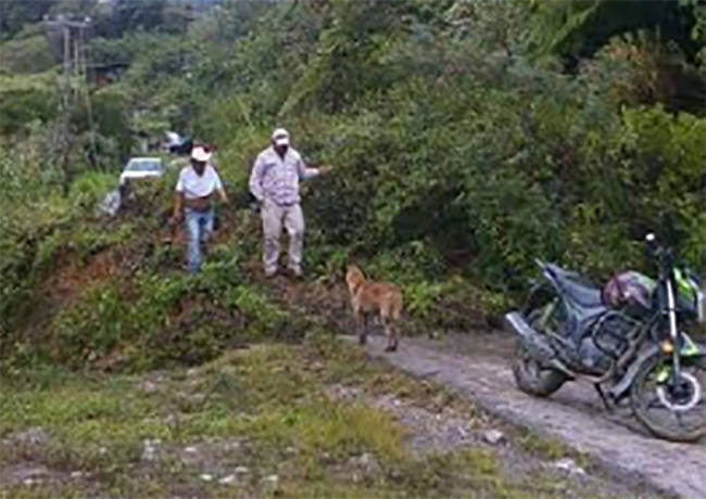 En vigilancia, dos comunidades de Ajalpan por riesgos de deslave