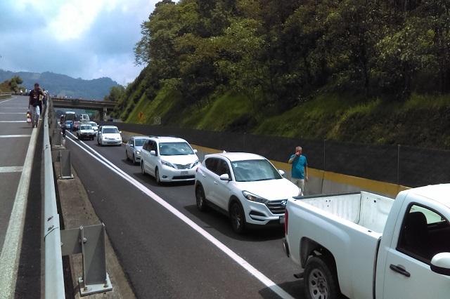 Ahora para ir a Jalisco en auto debes tramitar ¡pase de estancia!