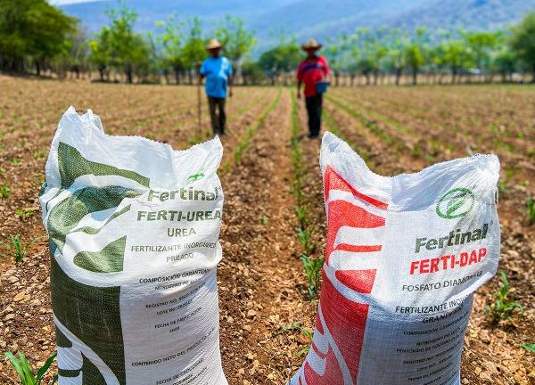 Investigarán abusos de edil de Huehuetla en entrega de fertilizantes