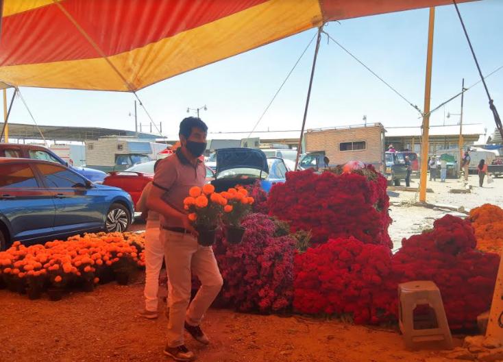 Productores de flores en Texmelucan reportan ventas del  50%
