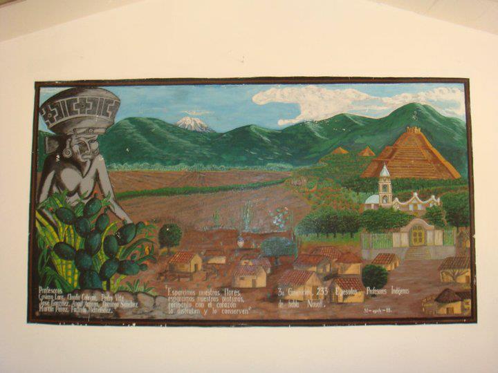 Edil de Huehuetlán El Chico denuncia saqueo de zona arqueológica