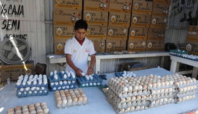 Puebla se mantiene en el segundo lugar nacional en producción de huevo