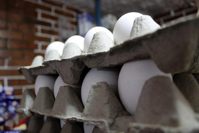 Avicultores de Tehuacán venderán 170 mi pollos diarios
