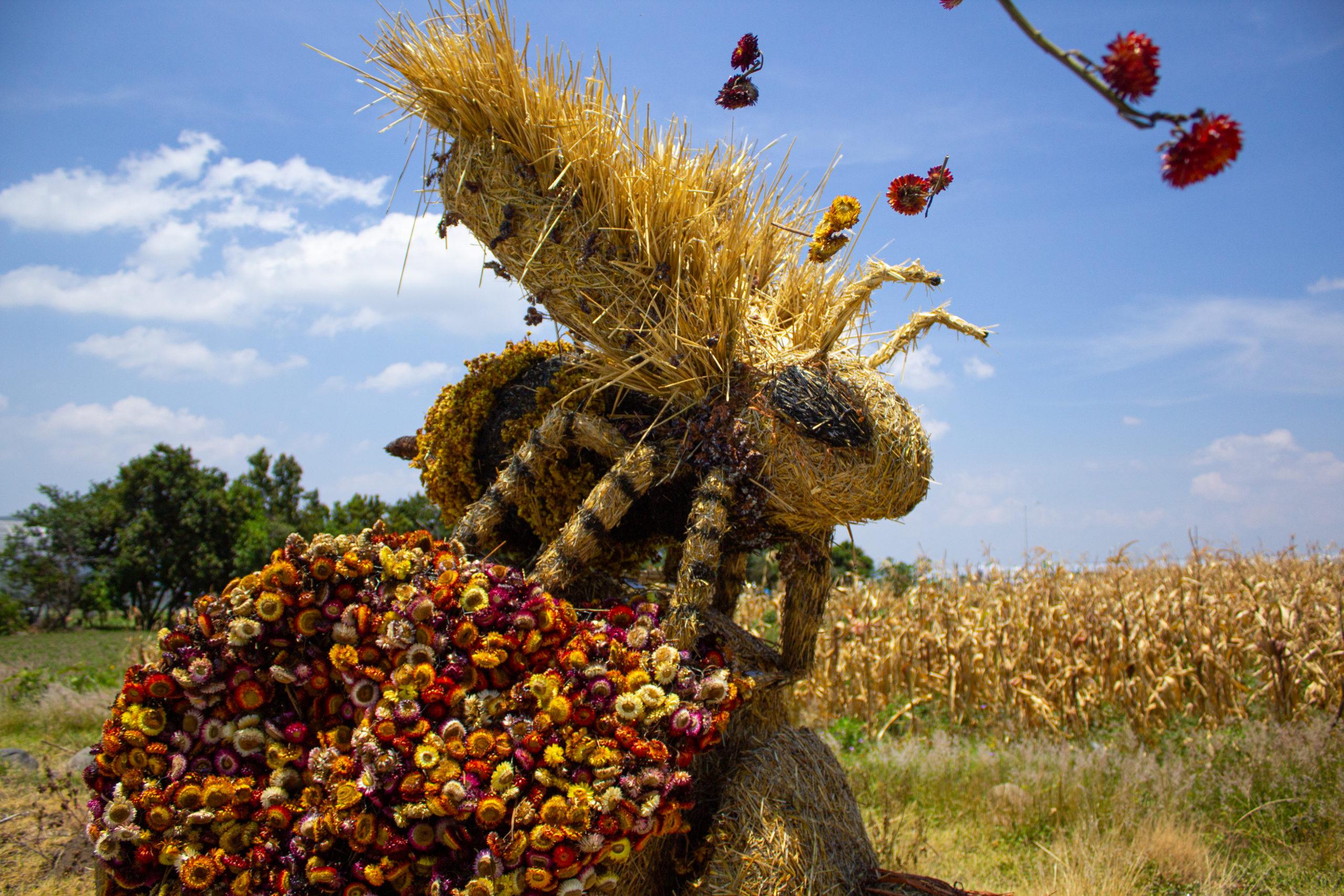 Atlixco recibirá las esculturas de paja más grandes de Latinoamérica