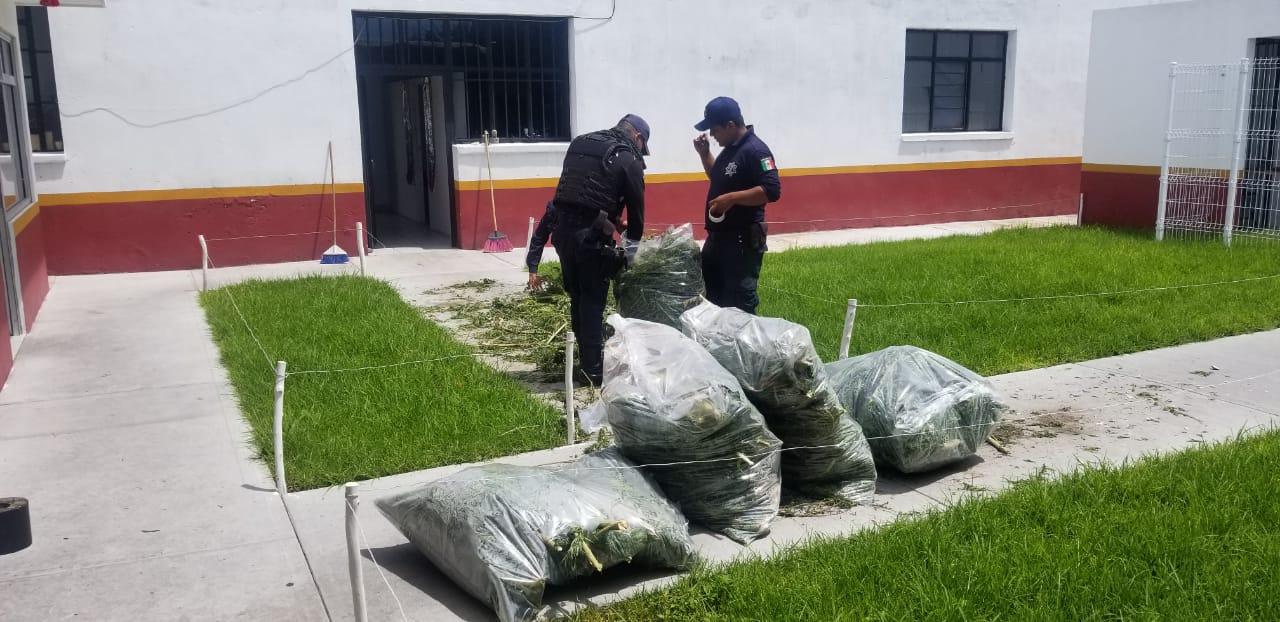Atrapan a narcomenudista en Huaquechula