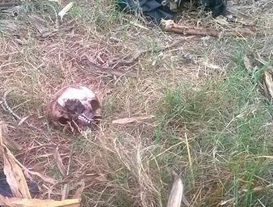 Labraban su tierra y descubren cráneo humano en Tlalancaleca