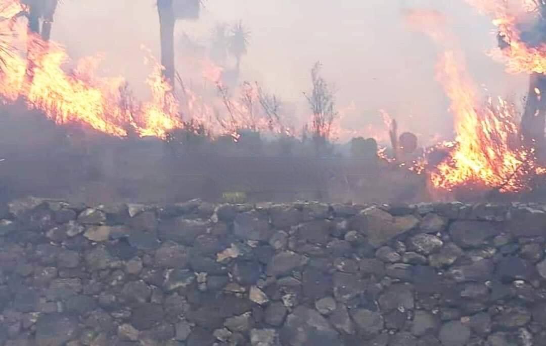 Fuerte incendio a metros de la zona arqueológica de Cantona en Tepeyahualco