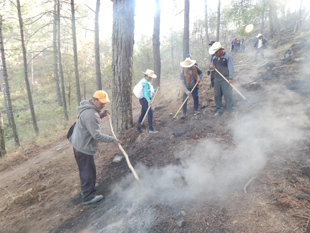 Sofocan incendio forestal al 100% en Zautla