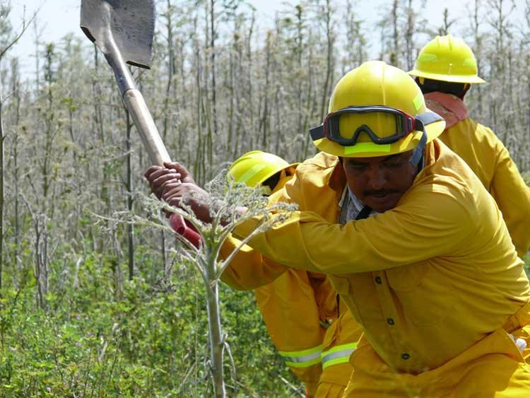 Cierra temporada de incendios con 511 siniestros en Puebla