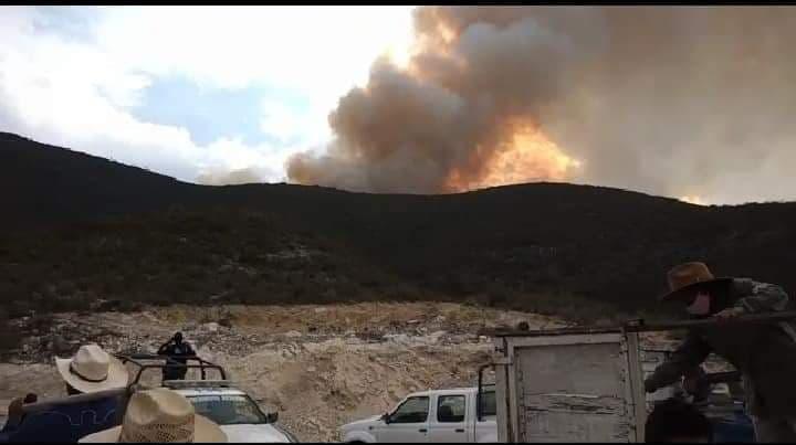 Incendio devasta más de 120 hectáreas en la reserva Tehuacán-Cuicatlán