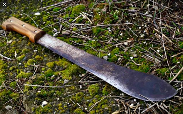 Matan a machetazos a El Tarzán en Izúcar
