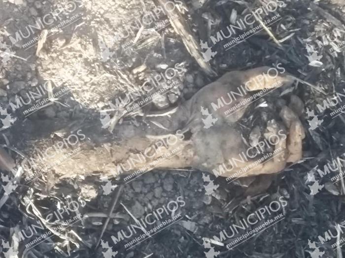 Dejan cuerpo desmembrado en terreno de Chietla